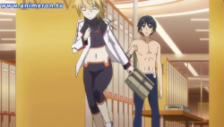 Infinite-Stratos-Disguise-1